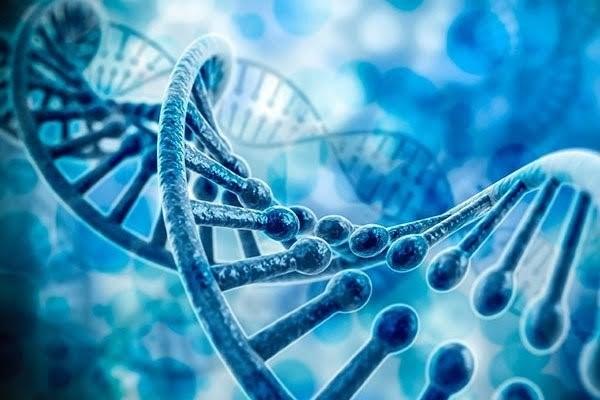 amplificacao-de-acidos-nucleicos